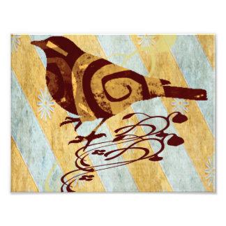 Patterned Bird and Swirls Photo Art