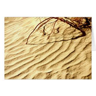 Patterns in Desert Sands,  Blank Inside Card
