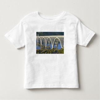 Patterson Memorial Bridge highway 101 over T Shirt
