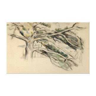 Paul Cezanne Large Pine, Study Canvas Print