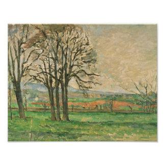 Paul Cezanne - The Bare Trees at Jas de Bouffan Art Photo