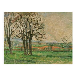 Paul Cezanne - The Bare Trees at Jas de Bouffan Postcard