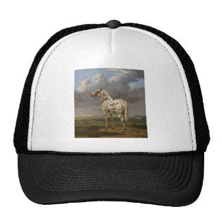 """Paulus Potter - The """"Piebald"""" Horse. Vintage Image Cap"""