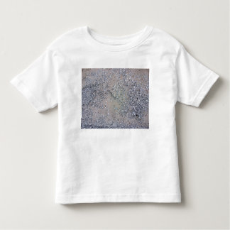 Pavement covered in sand tshirts
