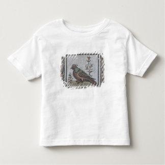 Pavement depicting a pheasant tee shirts