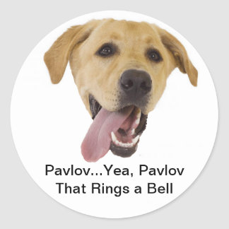 Pavlov Rings a Bell Stickers