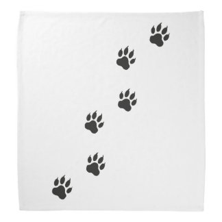 Paw prints of a cat bandana