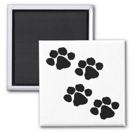 Paw Prints Square Magnet