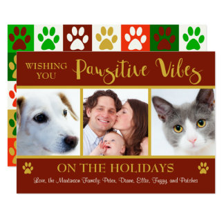 Pawsitive Vibes 3 Photo Animal Lovers' Holiday Card