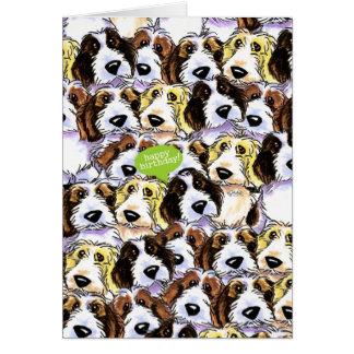 PBGV Dogs Funny Birthday Card
