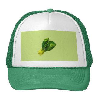 Pea Green Bok Choy Trucker Hats