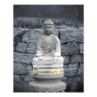 Peace Garden Photo Print