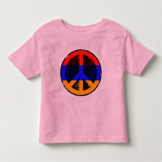 Peace In Armenia Toddler T-Shirt