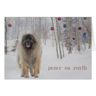 Peace Leonberger Christmas Card