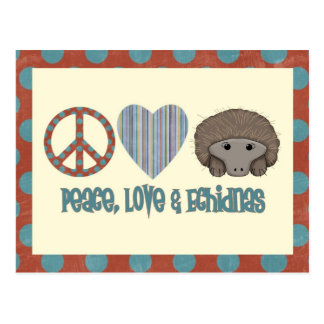 Peace Love Echidnas Postcard