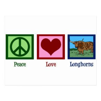 Peace Love Longhorns Postcard