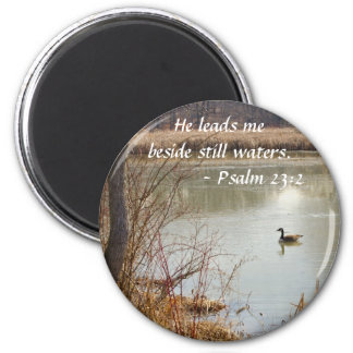 Peace on the Pond Magnet