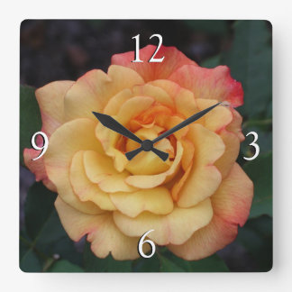 Peace Rose Beautiful Pink and Yellow Floral Square Wall Clock