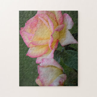 Peace Rose Blossoms Jigsaw Puzzle
