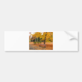 Peaceful and Quiet Autumn in the Park Bumper Sticker