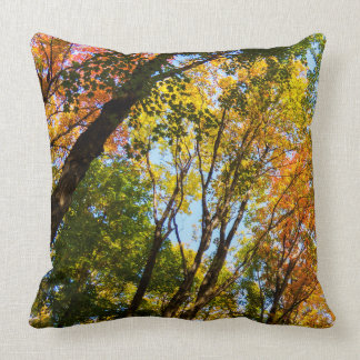 Peaceful Autumn Trees Cushion