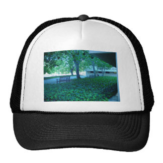 Peaceful Benches With Ground Cover Near Main Libra Trucker Hat