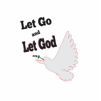 Peaceful Dove Let Go Let God Recovery Photo Sculpture Magnet