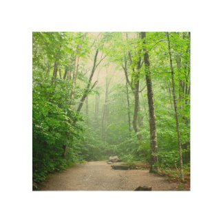 Peaceful Hike Wood Wall Decor