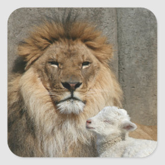 Peaceful lion and lamb square sticker