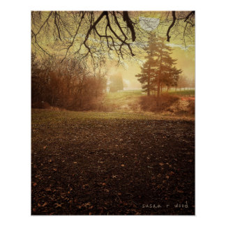 Peaceful Morning Poster Print