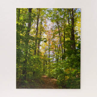 Peaceful Path In The Forest Jigsaw Puzzle