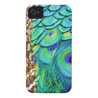 Peaceful Peafowl Flow iPhone 4 Cases