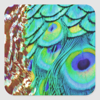 Peaceful Peafowl Flow Square Sticker