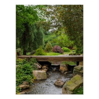 Peaceful Spring Creek Poster