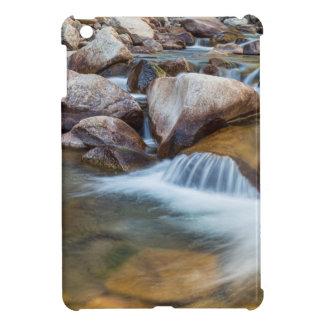 Peaceful Stream iPad Mini Covers