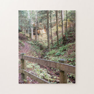 Peaceful Walking Trail Nature Path Puzzle