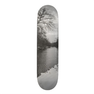 Peaceful Winter At James River Grayscale 18.1 Cm Old School Skateboard Deck