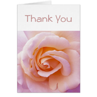 Peach and Pink English Garden Rose Card