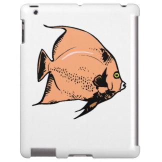Peach Angel Fish