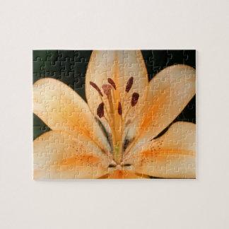 Peach Asiatic Lily Closeup Puzzle