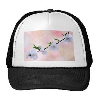 Peach Blossom Cap