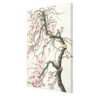Peach blossom (colour on paper) canvas print