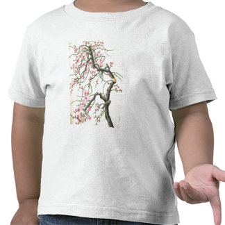 Peach blossom (colour on paper) t shirts