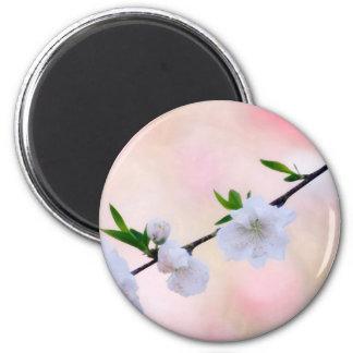 Peach Blossom Magnet