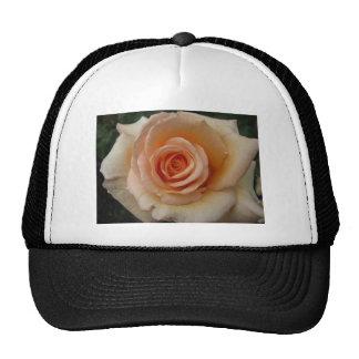 Peach colored rose cap