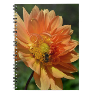 Peach Dahlia Flower and Bee Journal Spiral Notebooks
