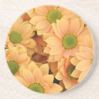 Peach Daisies With Green Center Coasters