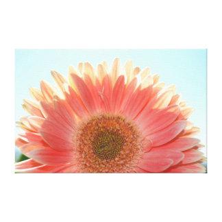 Peach Gerbera Flower Gallery Wrapped Canvas