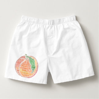Peach illustrated with cities of Florida State USA Boxers