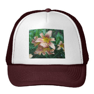Peach Lily Hat